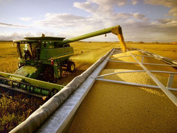Mato Grosso pode produzir safra de 48,2 milhões de toneladas de grãos